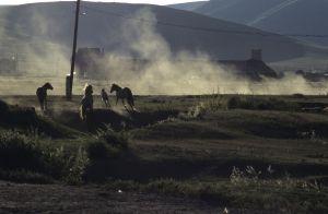 Mongolei Sommer 2001; Leben der Nomaden